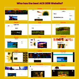 ACS 2019 Websites